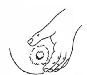 handexprss4